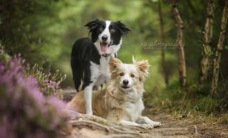 Leika and Nala