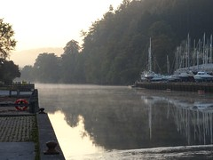 The white ladies of Longmarsh (Phil Gayton) Tags: mist morning river dart totnes devon uk buoyant