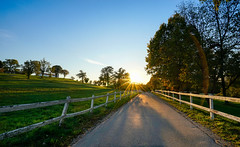 Lipica, Slovenia (Nstajn) Tags: sonya7ii sony sky zeiss 1635 a7 slovenia landscape nature panorama path road sun sunny sunset flare wide ngc