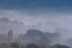 jocou-8646 (verolauro) Tags: alpesdehauteprovence brume diois drome fuji jocou provence vaucluse vautours vercors veroniquelaurolillo