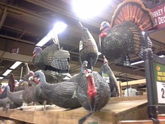 Happy Thanksgiving from Bass Pro Shops at the Pyramid (l_dawg2000) Tags: 2015 2015opening apparel arena basspro bassproshops boating camping downtown downtownmemphis familyoriented fishing food freestandingelevator fudge fudgemakingshop glasselevator greatamericanpyramid hunting memphis neon neondécor observationdeck pyramid retail retailrecycle retaurant sports sportsarena tshirts tennessee unitedstates usa