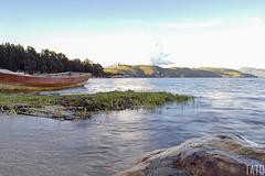 Laguna (Tato Avila) Tags: colombia colores clido cielos arboles agua atardecer vida naturaleza nubes lagunadetota laguna