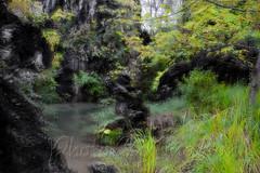 DSCF7183 (kingston Tam) Tags: waterfall river rapids sedimentaryrock stone ancientcity guizhou wetlandpark park canyon landscape naturallandscape mountain scenery streetscape oldfashioned streetphotography castle hawkers peddler fujifilmxt1