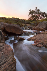Mannum Falls (Trace Connolly) Tags: australia australian australiasouthaustralia canon canon7d cloudsstormssunsetssunrises dusk environmentalphotography exposure environment flickr gold golden hiking landscape longexposure light movement nature naturephotography native orange rocks river red reflections rivergums rivers reedycreek sigma southaustralia sunset timeexposure trees water waterfalls sigma1750f28exdcoshsm sigma1750mm yellow rapids photographer digital sky tree sun