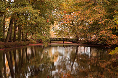 Autumn in the Netherlands (jeannetbijlsma) Tags: color colorfull fall autumn leafs leaf reflection water lake photo photographer photos picture pictures nature lovenature