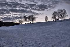 The blue hour..... (odda66) Tags: thebluehour sommersetra trondheim visittrondheim outdoor snow blue fujifilmxt1 fujinon23mmf14 xf23 xt1 landscape winterlandscape winter