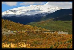 Continental Rail Canfranc-Martorell (--- juanito ---) Tags: renfe adif continental rail 333 3333 380 333380 cereal cerealero canfranc jaca martorell canfranero huesca pirineo mercancias traspirenaico