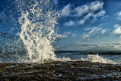 Splash (Howard Ferrier) Tags: oceania spray pacificocean coralsea foam splash sea seq ocean sunshinecoast waves rock australia caloundra shelleybeach queensland