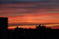 _MG_1164 (Bruno Moreira Fotografia) Tags: pordosol céu cidade anoitecer laranja nuvens luz sol