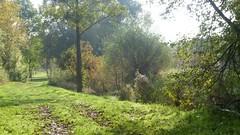 Selztal zwischen Groß-Winternheim und Schwabenheim an der Selz