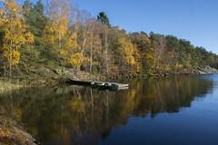 Lake Delsjö (Explore) (Rudi Pauwels) Tags: göteborg gothenburg sverige sweden schweden fs161030 emellan fotosondag autumn reflections fall tamron 18270mm tamron18270mm nikon d7100 nikond7100