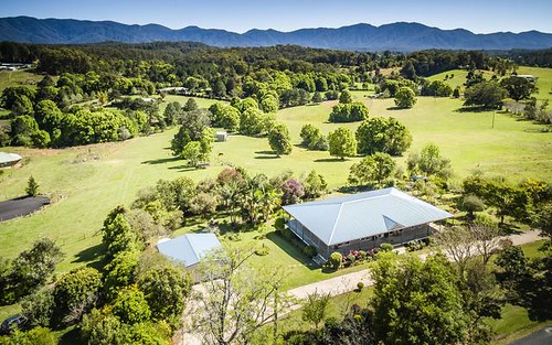 81 North Bank Road, Bellingen NSW 2454