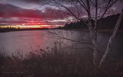 Blustery Sunset_Explore 11.20.16 (maryanne.pfitz) Tags: landscape sunset spiritflowage tomahawk wisconsin lincolncounty winds water lake reservoir birchtree map8997 maryannepfitzinger