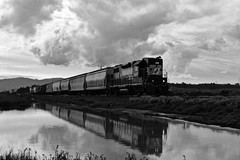 B&W reflections (caltrain927) Tags: northwestern pacific railroad nwp railway emd electromotivediesel gp382 high hood ex sou southern norfolk ns empty grain freight train loaded centerbeam lumber california ca sears point novato