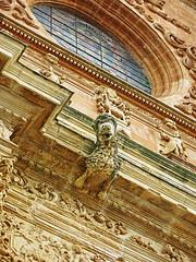 (ManuelAngel78) Tags: astorga elbierzo bierzo león castillayleón catedral catedraldeastorga gárgola