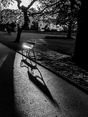 Hot:Seat (BazM:Photog.......:-)) Tags: park parkbench autumn autumnsun queenspark bolton shadow shadows longshadows contrast contrejour light lightreflected hot seat hotseat pathway northwestengland northwest lowsun