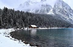 Lake Louise (Jane Olsen ( Chardonnay)) Tags: cabin lakelouise water ice snow mountains trees alberta nationalpark