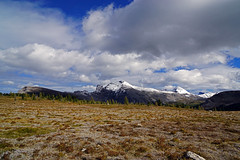 20160909_107a (mckenn39) Tags: nature canada rockymountains canadianrockies banffnationalpark alberta
