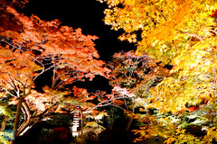 Tohoku 2016 - 502 (西文 Simon) Tags: 日本東北 miyagigun miyagiken 日本