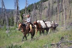 Ranger Service (michael.veltman) Tags: yellowstone backpacking loop trail gallatin mountains specimen creek