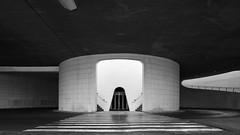 *** (mg photography2) Tags: valencia espana spain city arts science urban architecture architectural black white travel monochrome mono canon europe