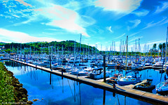 Scotland west coast Inverkip marina 24 August 2016 by Anne MacKay (Anne MacKay images of interest & wonder) Tags: scotland west coast inverkip marina yachts boats harbour xs1 24 august 2016 picture by anne mackay