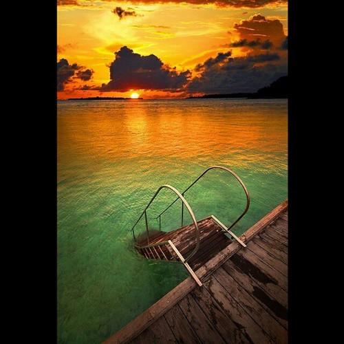 Sun Island Beach Maldives: Flickriver: Elissian.mazzeo's Most Interesting Photos