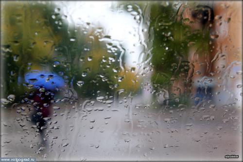 В дождливый день.../ photo_2012_6_4_18_42_28