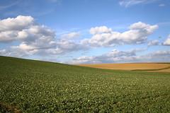 Felder (Xtraphoto) Tags: landscape feld felder himmel land dachau landschaft