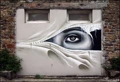 Liliwenn (Chrixcel) Tags: streetart france graffiti tag bretagne brest graff wsawof liliwenn