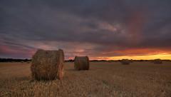 Haybales at sunset (*_rob) Tags: sunset robert fields bales haybales ringrow
