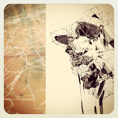 low poly (pacula13) Tags: art illustration square design sketch artwork artist drawing illustrated spiderweb sketchbook cobweb squareformat illustrator draw drawn lowpoly illustrate sketched lopoly