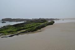 (Marianel1) Tags: light sea espaa naturaleza verde luz beach nature water landscape mar spain agua nikon flickr foto playa arena galicia vista fotografia pontevedra rocas sanxenxo d3000 marianel1