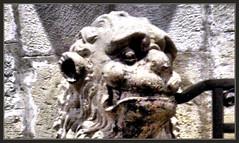 SEU DE MANRESA-SIMBOLS-LLE-SIMBOLOS-LEON-HERMETISMO-CONOCIMEINTO-GUARDIAN-FOTOS-CATALUNYA-ARISTA-PINTOR-ERNEST DESCALS- (Ernest Descals) Tags: pictures barcelona art artwork artist arte god basilica magic lion ciudad visit catalonia master grecia leon fotos artistas saber gods catalunya egipto maestro symbols sabiduria piramides hermes mensajes detalles pintor visitas guardia dios artistes artista ver toth ciutat lle catedrales magia leones enki manresa gotico keeper simbolos magister visitar misterios lleons maestros mistica guardianes magicos dioses magisterio ghotic constructor goticas simbols hermetismo anunnaki fotografiar hermetics constructores ocultos misticos hermeticos pintors conocimientos ernestdescals miradainterior seudemanresa fotosernestdescals