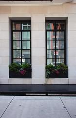 (alaskite) Tags: street city nyc newyorkcity windows urban newyork building architecture buildings nikon hipster streetphotography batterypark tribeca nikond80