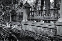 Border (jores59) Tags: cemetery boston mediumformat bostonma 620film foresthillscemetery medalistii kodakmedalist