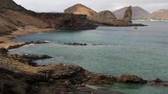 Galapagos Shorts (maguire33@verizon.net) Tags: ecuador wildlife galapagos endemic albatross linblad sallylightfoot marineiguana gianttortoise galapagosislands wavedalbatross canonef100400f4556lis nationalgeographicendeavor