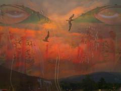 >> the eyes of the sky << (xandram) Tags: sky birds clouds photoshop eyes buddhist textures hindu