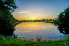 Westchase Lake Sunset (dbubis) Tags: sunset sky lake nature beautiful clouds tampa florida fl bubis westchase dbphoto nex6