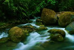 Rio Savegre 2 (timberwolf1212) Tags: river costarica jungle cloudforest riosavegre