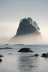 Seastack near Cape Johnson (Keith T. Wong) Tags: ocean park mist fog coast washington stack national olympic seastack onp