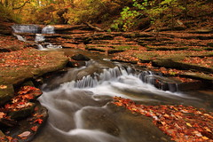Upper Cascades of Meadow Creek (MarcusDC) Tags: water creek kentucky fallfoliage meadowcreek millsprings cascadeautumn