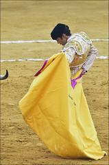 Jose Tomas 0187 (4) (likamccuntz) Tags: feria bullfight malaga malagueta matador tauromaquia corridadetoros josetomas