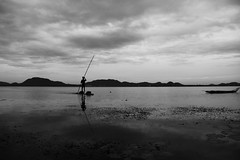 Returning Home @ Kolavai Lake (Raja. S) Tags: cwc india chengalpet chennaiweekendclickers chennai cwcwalk363 rajas