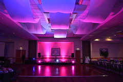 LED Up-lighting/Ceiling Draping