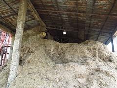 056 (alexandre.vingtier) Tags: haiti rum caphaitien nazon clairin rhumagricole distillerielarue