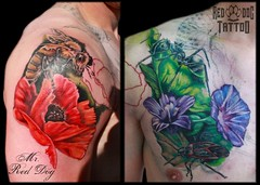 Ant Cover Up (Red Dog Tattoo) Tags: red dog rose tattoo insect 3d spain lily wasp ant bee poppy reddog malaga coverup realistic benalmadena cooltattoo sleevetattoo 3dtattoo besttattoo awesometattoo sexytattoo cutetattoo girlytattoo laserremoval legsleevetattoo reddogtattoo benalmadenaink mrreddog realistictttoo