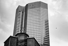 (m.oja) Tags: bw architecture frankfurt 40 mrokkor402 leicam82 silverefexpro2