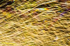 RISCOS DE GUA -  (54) (ALEXANDRE SAMPAIO) Tags: light luz gua brasil cores arte amor natureza paz vida contraste beleza fotografia formas desenhos franca cor fantstico aura desenho espao deus experimento criao energia iluminao geometria realidade universo irreal composio multiplicidade imaginao divino esttica delicadeza sensibilidade pontodevista manchas possibilidade experimentao invisvel possibilidades fragilidade visvel transcendncia irrealidade alexandresampaio riscosdegua