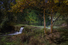 365-336 ( estatik ) Tags: 365336 365 336 october152016 oct 101516 sat saturday night long exposure full moon hunter harvest aquetong spring solebury newhope pa pennsylvania waterfall historic natural ingham